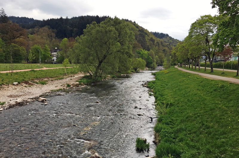Mord in Freiburg
