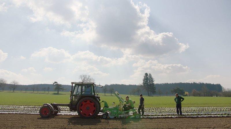 Mehr Bio für Bayern - eine Chance trotz Corona?