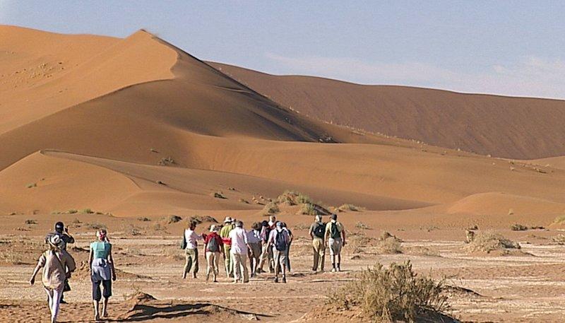 Entdeckungstouren im Süden Afrikas
