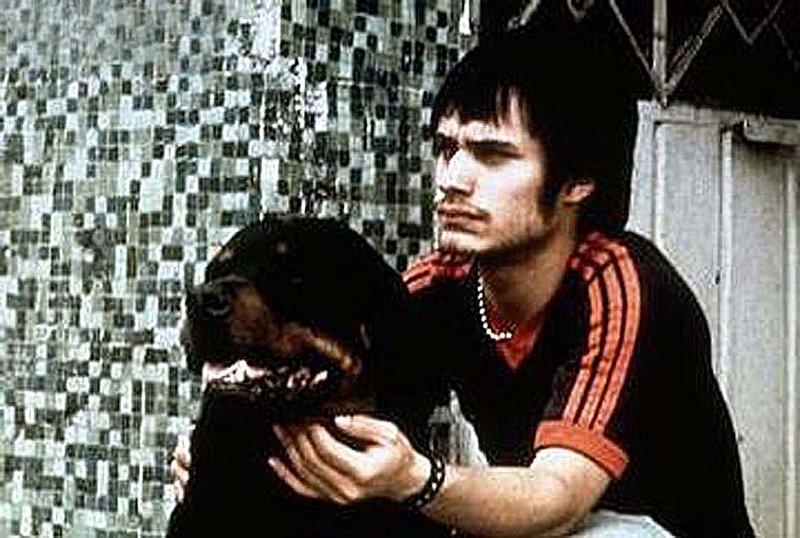 Amores Perros - Von Hunden und Menschen