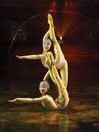 Cirque Du Soleil: Alegría