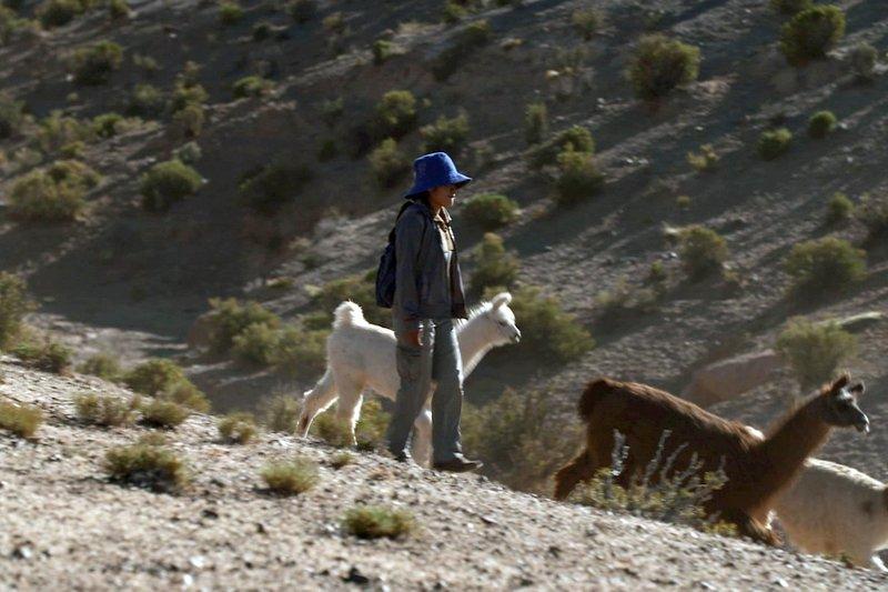 Die Anden - Das Erbe der Kolla-Indianerinnen