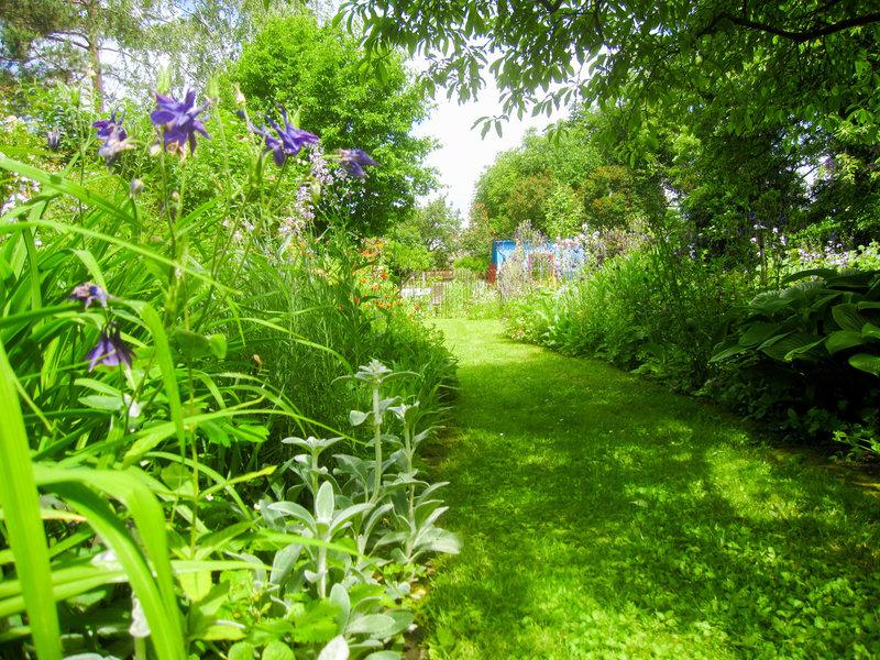 Natur im garten 2006 bilder seite 2 tv wunschliste for Natur im garten