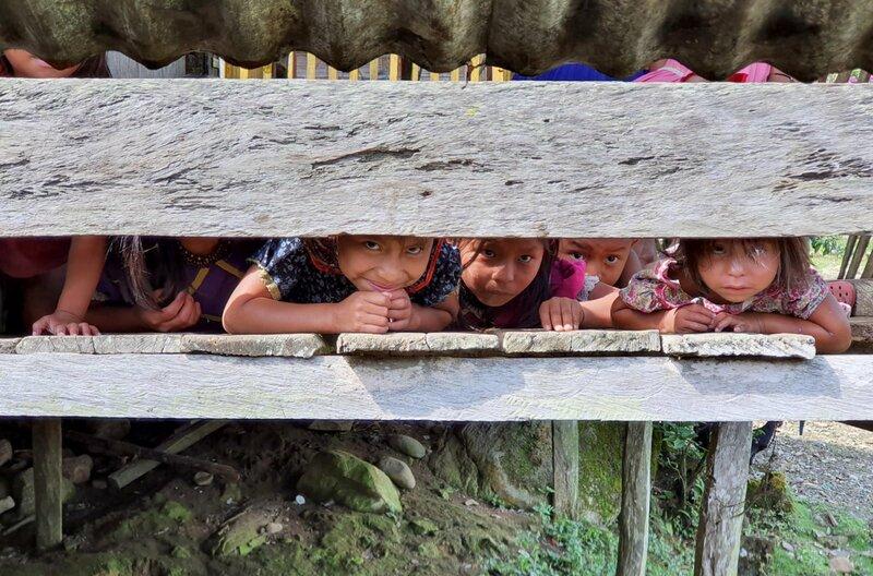Die Urwald-Hebammen Kolumbiens