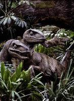 Die Velociraptoren gehören zu den besten Jagd- und Tötungsmaschinen aller Zeiten. Bei ihnen paart sich enorme Intelligenz mit Jagdinstinkt und Mordlust, und jetzt machen die seit über 65 Millionen Jahren ausgestorbenen Raubtiere Jagd auf Menschen ...