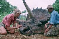 Die beiden Paläobotaniker Dr. Ellie Sattler (Laura Dern, l.) und Dr. Alan Grant (Sam Neill, r.) werden von dem Gründer des Jurassic Parks, nach Druck durch seine Investoren, gebeten, ein Gutachten zu erstellen und die Sicherheit des Dinosaurier Parks zu überprüfen. Doch dann kommt alles ganz anders ...