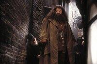 Zunächst glauben Harry und seine Freunde, dass Hagrid (Robbie Coltrane) vor 50 Jahren die Kammer des Schreckens geöffnet hat. Doch dann geschieht etwas Unglaubliches ...