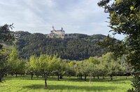 Burg Forchtenstein.
