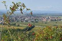 St. Margarethen im Burgenland.