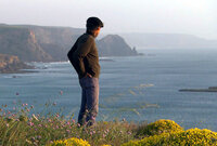 190 Kilometer Küstenlandschaft im Süden Portugals: die Algarve