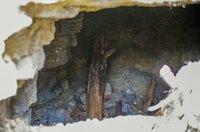 Ausgrabungen im ehemaligen Steinbruch des Konzentrationslagers Buchenwald bei Weimar. MDR Projekt Weimar   02.10.2019   Foto:MDR/Holger John