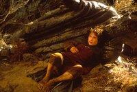 Beutlin entschließt sich, aus dem Auenland fortzugehen und vermacht seinem Neffen Frodo (Elijah Wood) einen geheimnisvollen Ring ...