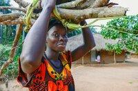 Auch schwere Arbeiten wie das Holztragen übernehmen auf Orango die Frauen.