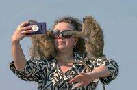 Touristen schießen gerne Selfies mit den Affen. Doch aufgepasst die Tiere haben flinke Finger!