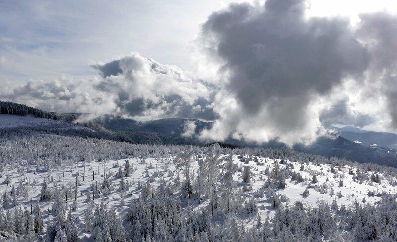Ein Winter im Schwarzwald