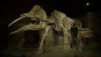Große Verlierer: Beim letzten von fünf Massenaussterben verschwanden die Dinosaurier von der Erde.