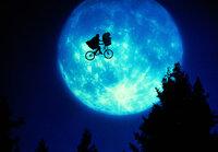 Der kleine Elliott (Henry Thomas) hat in dem Außerirdischen E.T. einen wahren Freund gefunden.