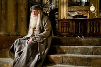 Albus Dumbledore (Michael Gambon)