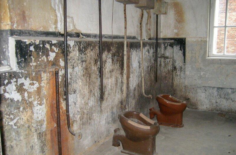 Medizinversuche in Auschwitz