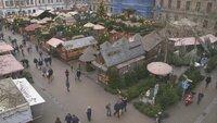 In Nürnberg haben die alteingesessenen Christbaumhändler ihre Stände direkt am berühmten Christkindles-Markt.