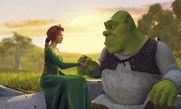 Schon bald wird Shrek (r.) und Fiona (l.) klar, dass sie vieles gemeinsam haben, trotz ihres grundverschiedenen Aussehens ...