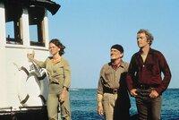 Celeste, Wilbur Hubbard und Mike Turner (Michael Caine) begutachten das Wrack ...