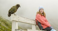 """Wissenschaftlerin Amanda Greer mit ihrem """"Forschungsobjekt"""" hoch in den Alpen Neuseelands. Da Keas Millionen Jahre auf der Insel ohne Menschen und Säuger lebten, sehen sie uns nicht als Feind an.  Die Verwendung des sendungsbezogenen Materials ist nur mit dem Hinweis und Verlinkung auf TVNOW gestattet.; Wissenschaftlerin Amanda Greer mit ihrem _Forschungsobjekt_ hoch in den Alpen Neuseelands. Da Keas Millionen Jahre auf der Insel ohne Menschen und Säuger lebten, sehen sie uns nicht als Feind an.  Die Verwendung des sendungsbezogenen Materials ist nur mit dem Hinweis und Verlinkung auf TVNOW gestattet."""