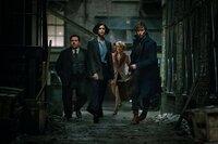 L-R: Jacob Kowalski (Dan Fogler), Tina (Katherine Waterston), Queenie (Alison Sudol) und Newt (Eddie Redmayne).