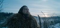 Zusammen mit einer Gruppe Gleichgesinnter macht sich der Fallensteller und Pelztier-Jäger Hugh Glass (Leonardo DiCaprio) auf den Weg in die winterlichen Wälder. Doch der Angriff von Arikaree-Indianern und einem Grizzly bringen den Trapper schließlich in Lebensgefahr ...
