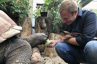 Tobi Kämmerer füttert im Darmstädter Vivarium die Riesenschildkröte Mike.