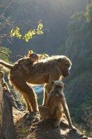 Die alte Mutter mit ihren beiden Kindern beim Hang.