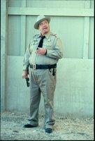 Als der Bandit wieder unterwegs ist und diesmal tatsächlich einen Elefanten im Schlepptau hat, ist ihm der Sheriff (Jackie Gleason) dicht auf den Fersen. Aber kommt er dem Schlitzohr wirklich auf die Spur?