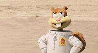 """Sandy Cheeks liebt die berühmten Krabbenburger aus der """"Krossen Krabbe"""". Plötzlich wird jedoch das Geheimrezept gestohlen und Bikini Bottom steht Kopf ..."""