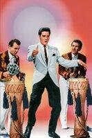 Elvis Presley (Mike Windgren).