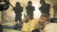 Der verkaterte Franz Eberhofer (Sebastian Bezzel) und Hund Ludwig werden unsanft vom SEK geweckt.