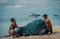 Manuela Hauser (Haley Louise Jones) und Pit Wagner (Daniel Roesner) untersuchend das tote Walbaby.