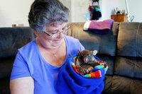 MareTV Tasmanien - Australiens grösste Insel Linda Tabone kümmert sich liebevoll um Wombat-Waisen und zieht die Jungen auf. SRF/NDR/Steffen Schneider