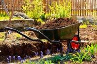 Experten geben Tipps für die Gartenpraxis und die Gestaltung von Gärten, Terrassen und Balkonen. Einen Schwerpunkt bilden Berichte über Pflanzen und Filme über die schönsten Gärten der Welt.