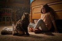 Ellie (Jeté Laurence)