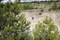 Bergbaulandschaft, Hotspot DerArtenvielfalt