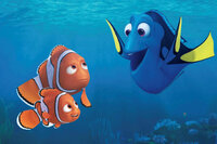 Findet Dorie Freunde unter Wasser SRF/Disney/Pixar