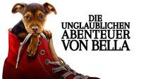 Die unglaublichen Abenteuer von Bella - Artwork