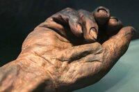 Diese Moorleiche war ein keltischer König und wurde vor etwa 2.000 Jahren den Göttern geopfert.