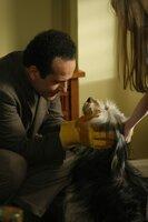 Adrian Monk (Tony Shalhoub) kann nicht zulassen, dass der Hund Shelby in der Tötungsstation landet und nimmt ihn kurzerhand bei sich auf. Ob das gut geht?