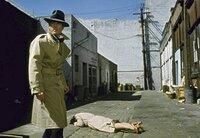 Auf der Flucht: Johnny (Robert Redford) wird von Killern gehetzt.