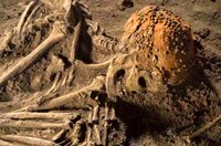 Die Dokumentation interessiert sich insbesondere für die reich verzierte Grabstelle einer Frau in den norditalienischen Grimaldi-Höhlen: die Frau von Cavillon.