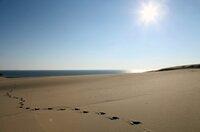 Die Ostsee ist das jüngste Meer der Erde und erst nach der letzten Eiszeit entstanden. Es scheint so vertraut, bietet aber viele Überraschungen. Wind und Wellen formen bis heute die Ufer der Ostsee. Die erste Folge führt von Dänemarks Nordspitze, über die Halbinsel Darß und die Kurische Nehrung bis zu den endlosen Stränden Lettlands. - Foto: Weiße Düne, Kurische Nehrung.