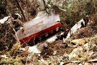 Teile der Seitenverkleidung von Japan Airlines Flug 123.