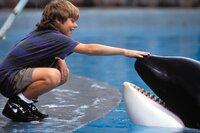 Der 12-jährige Ausreißer Jesse (Jason James Richter) freundet sich in einem Vergnügungspark mit einem Killerwal an ...