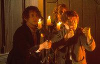 Die Gemeinschaft wird getrennt. Sam (Sean Astin, r.) und Frodo (Elijah Wood, l.) müssen ohne die Gefährten ihre gefährliche Reise fortsetzen ...